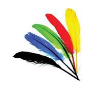 Φτερά ινδιάνου διάφορα χρώματα 12-15εκ.