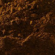 Buonarroti σκόνη αγιογραφίας όμπρα ψημένη 70gr