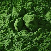Buonarroti σκόνη αγιογραφίας πράσινο τσιμέντου 110gr