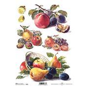 """Ριζόχαρτο """"fruits"""" 21x29εκ.   (ITD-R397)"""