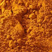 Buonarroti σκόνη αγιογραφίας ώχρα χρυσή 50gr