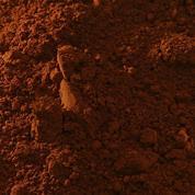 Buonarroti σκόνη αγιογραφίας σιέννα ψημένη 70gr