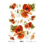 """Ριζόχαρτο """"red anemone"""" 21x29εκ.   (ITD-R958)"""