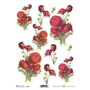 """Ριζόχαρτο """"red ranunculus"""" 21x29εκ.   (ITD-R420)"""