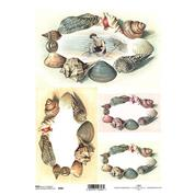 """Ριζόχαρτο """"shells"""" 21x29εκ.   (ITD-R408)"""