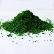 Γρασίδι σε σκόνη πράσινο 50gr.