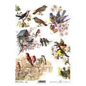 """Ριζόχαρτο """"birds"""" 21x29εκ.   (ITD-R325)"""